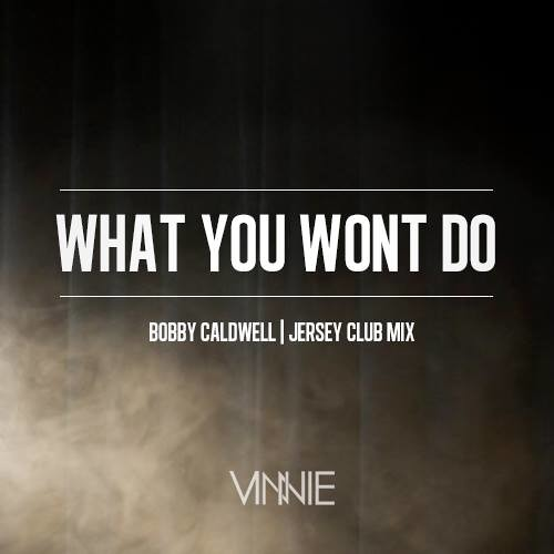 What You Wont Do By Vinnie Maniscalco
